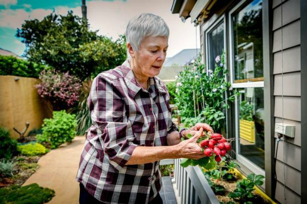 Dementia study reveals gardening may prevent disease