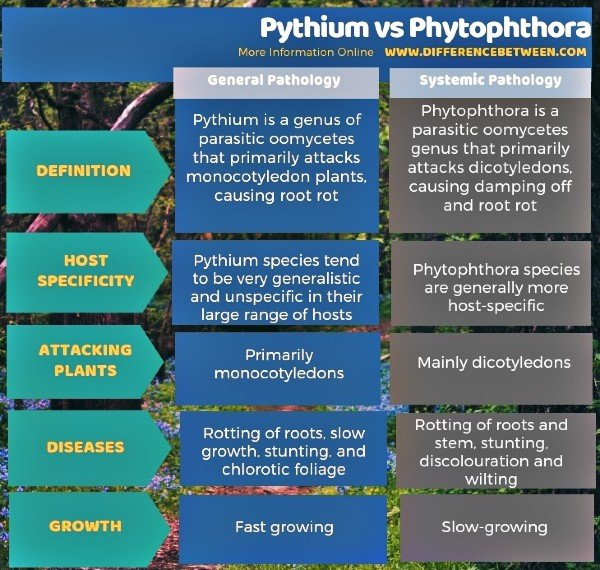 Difference Between Pythium and Phytophthora - Pathogen Comparison